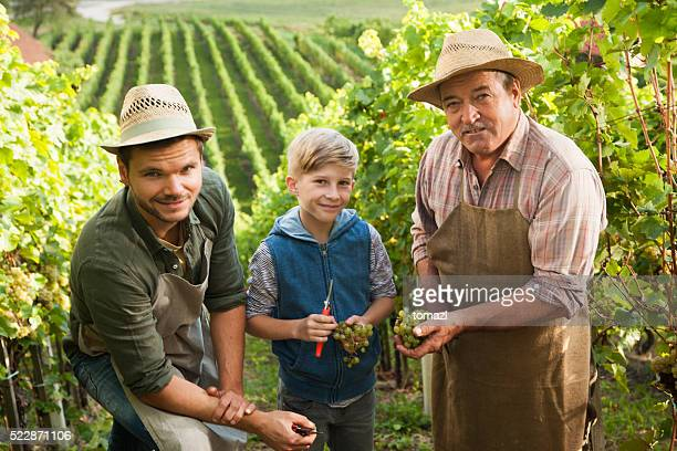 Vineyard from fathers to sons