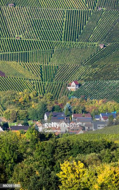 vineyard in weinsberg near heilbronn germany - central europe stock photos and pictures