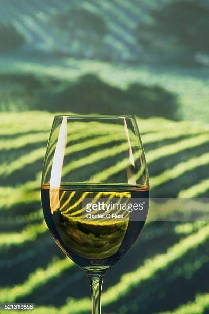 Vineyard Refracted in Wine Glass
