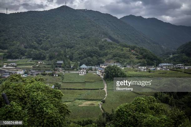 Vineyard sits near Daizenji Temple, center left, and houses in Katsunuma, Yamanashi Prefecture, Japan, on Friday, Sept. 7, 2018. Mercian Corp.,...