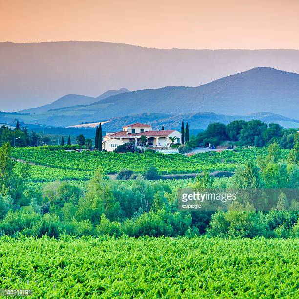 Vineyard, villa and rolling hills in Languedoc-Rousillon