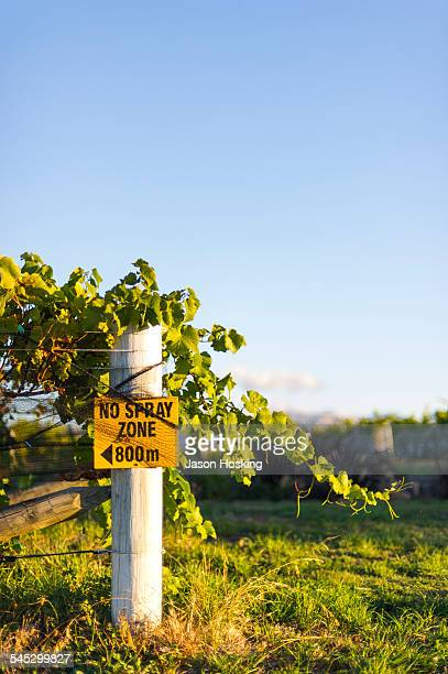vineyard with spray free sign - marlborough new zealand stock pictures, royalty-free photos & images