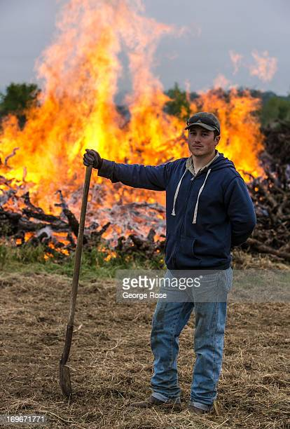 A vineyard worker watches over a large burning pile of diseased and dead grapevines April 26 near Healdsburg California Moderate temperatures and a...