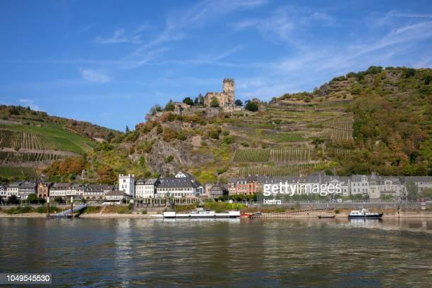 Vineyards along the Rhine valley, Rhineland-Palatinate, Germany