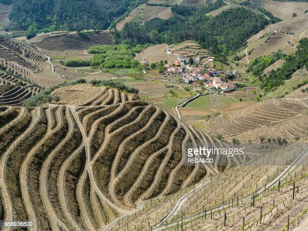 Vineyards and a small village near Assento The valley of river Douro It is the wine growing area Alto Douro and listed as UNESCO World heritage...