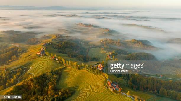 vineyards and houses on hills, jeruzalem, slovenske gorice, prlekija, styria, slovenia - balkans stock photos and pictures