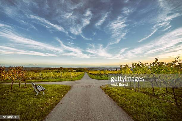 vineyards and sky - crossroad stock pictures, royalty-free photos & images