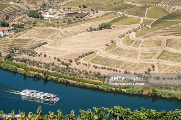 Vineyards and the Douro River, Alto Douro Wine Valley