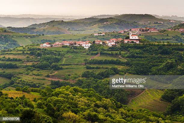 Vineyards and the hill top town of Vedrijan, Goriska Brda, Slovenia, Europe