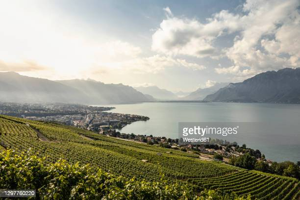 vineyards and town on lakeshore with mountains in distance - vaud canton stock pictures, royalty-free photos & images