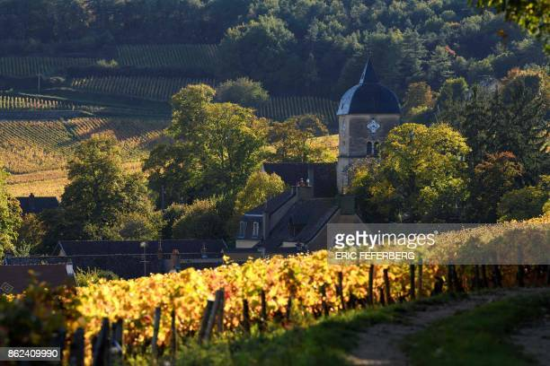 Vineyards are pictured on October 12 2017 in ChambolleMusigny