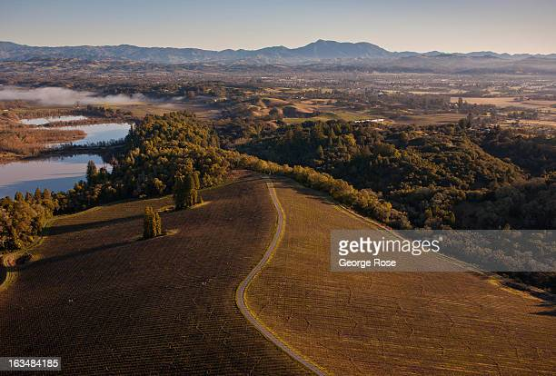 Vineyards in Sonoma County's Russian River Valley are viewed from the air on February 15 in Healdsburg California The Russian River Valley is one of...