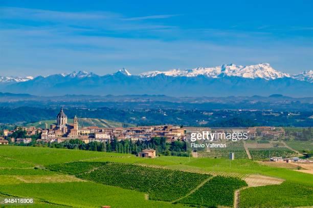 Wijngaarden in de Monferrato, een heuvelachtig gebied, grotendeels gebaseerd op de teelt van wijnstokken. Provincie Alessandria, Piemonte, Italië