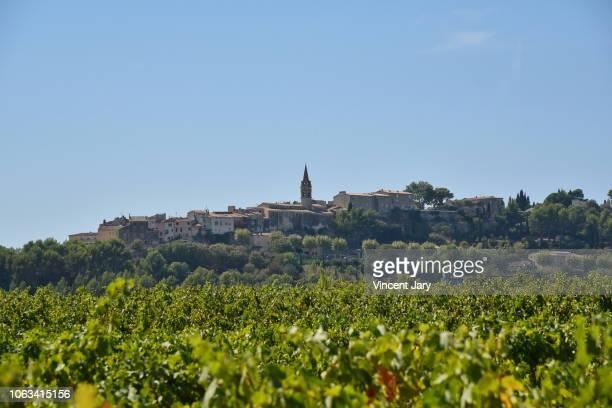 vineyards landscape in france - bandol photos et images de collection