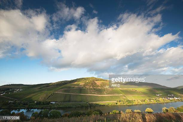 vineyards, merler koenigslay, merl, zell, moselle valley, mosel, - moselle stockfoto's en -beelden
