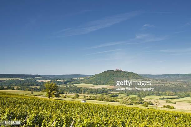 Vineyards near to the hilltop village of Vezelay.