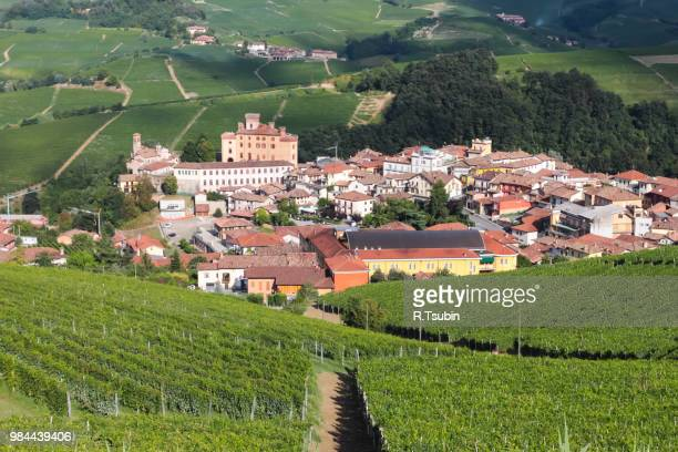 vineyards on the hills of barolo village in piedmont province in italy - piedmont italy stock photos and pictures