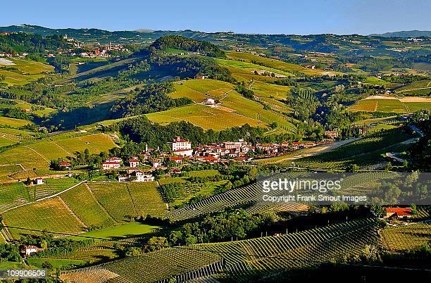vineyards panorama, barbaresco, piemonte, italy. - piemonte - fotografias e filmes do acervo