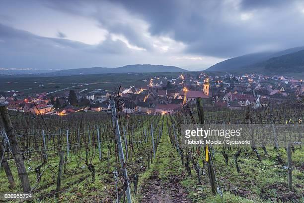 Vineyards Riquewihr Alsace France