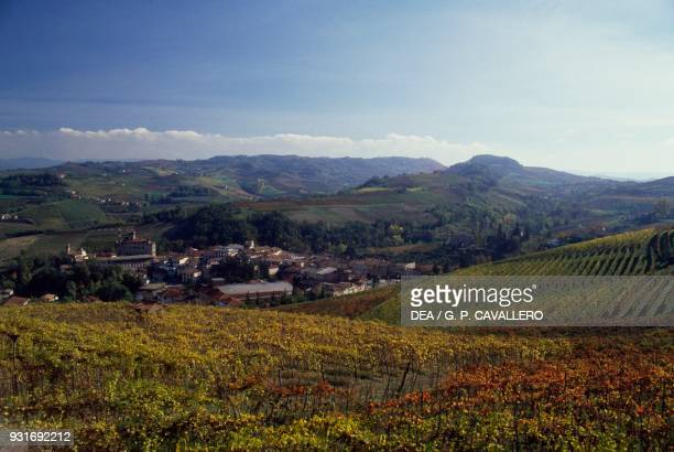 Vineyards rows of vines Barolo Langhe the Vineyard Landscape of Piedmont Piedmont Italy