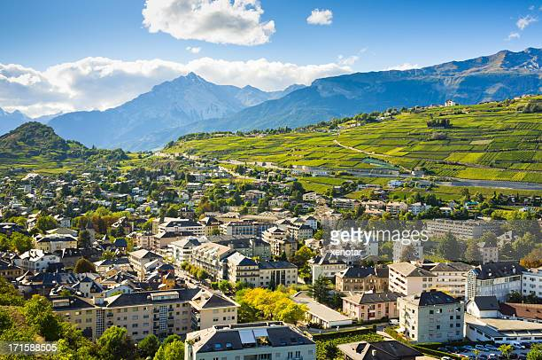 vineyards view from chateau de tourbillon - sion switzerland stock pictures, royalty-free photos & images