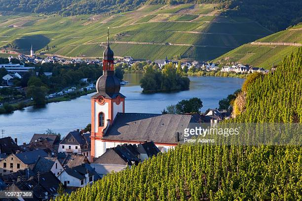 vineyards & zell mosel village, germany - moselle stock pictures, royalty-free photos & images