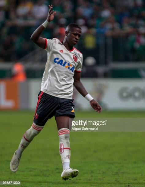 Vinicius Jr of Flamengo reacts during a match between Palmeiras and Flamengo for the Brasileirao Series A 2018 at Allianz Parque Stadium on June 13...