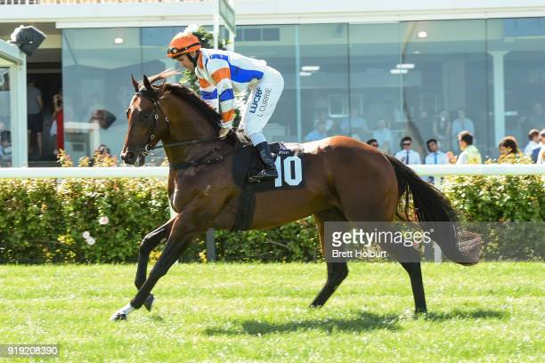 Vinland ridden by Luke Currie heads to the barrier before CS Hayes Stakes at Flemington Racecourse on February 17 2018 in Flemington Australia