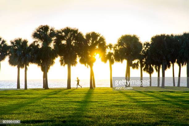 vinoy park, sunrise, saint petersburg, florida - st. petersburg florida stock pictures, royalty-free photos & images