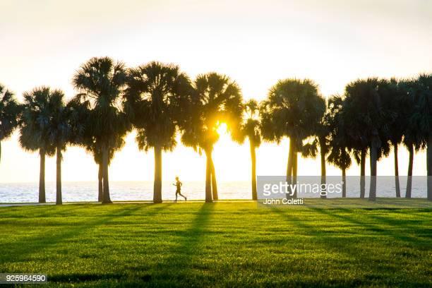 vinoy park, sunrise, saint petersburg, florida - tampa stock pictures, royalty-free photos & images