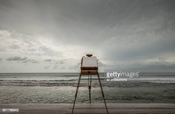 Vintage camera photographing seascape