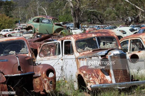 Vintage cars at wrecking yard