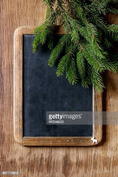 Vintage empty chalkboard with fir Christmas tree and small elk over wooden background Top view with space for text