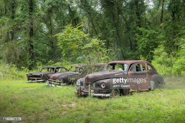 vintage ford motor vehicles, abandoned, north florida - rusty old car stock pictures, royalty-free photos & images