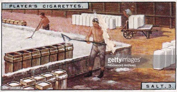 Vintage illustrated collectible tobacco card from the Products of the World series published in 1928 by John Player and Sons Cigarettes, depicting...