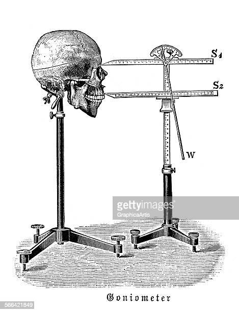 Vintage illustration of a goniometer measuring a human skull used in early anatomical measurements and phrenology engraving 1810