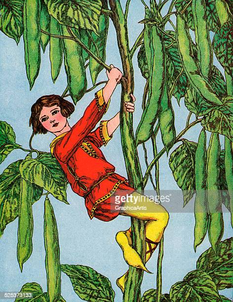 Vintage illustration of Jack climbing the beanstalk from the children's story Jack and the Beanstalk handcolored engraving circa 1920