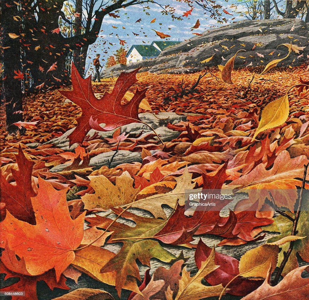Swirling Fall Leaves : News Photo