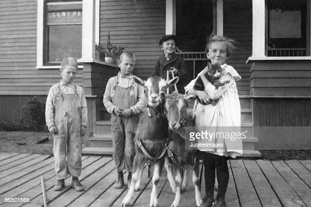Vintage image of children with goats and cat