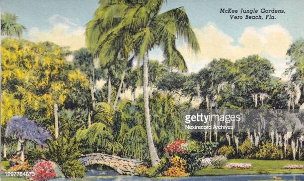 Vintage linen postcard published in 1942 from series depicting titled 'Colorful Florida Attractions' for travelers and tourist, here a view of McKee...