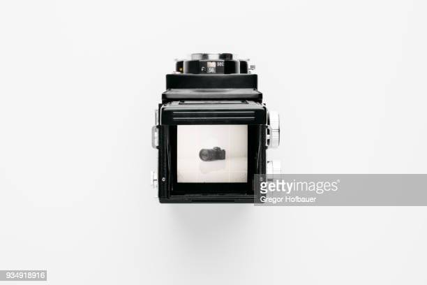 vintage medium format camera looks at new digital camera - photographic film camera stock photos and pictures