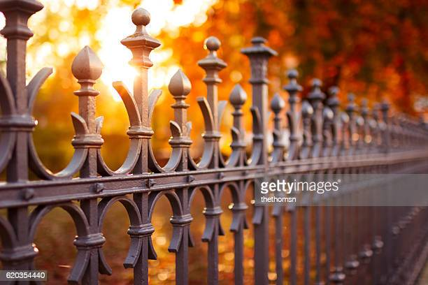 Vintage Metal Fence With Autumnal Background Colors And Light