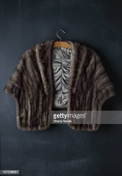 vintage mink coat - coat stock pictures, royalty-free photos & images