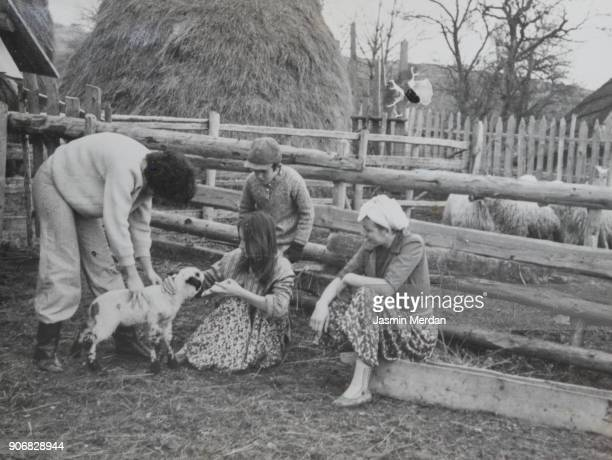 vintage photo of children feeding little lamb - archival photos stock pictures, royalty-free photos & images