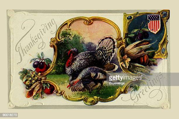 A vintage postcard to be sent for Thanksgiving featuring two well fed turkeys surrounded by typical Autumn harvest goods like corn and apples