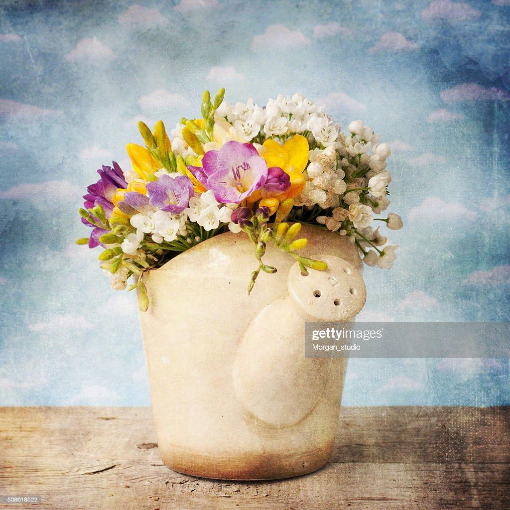 Vintage style, fresh freesia, spring flowers : Stock Photo
