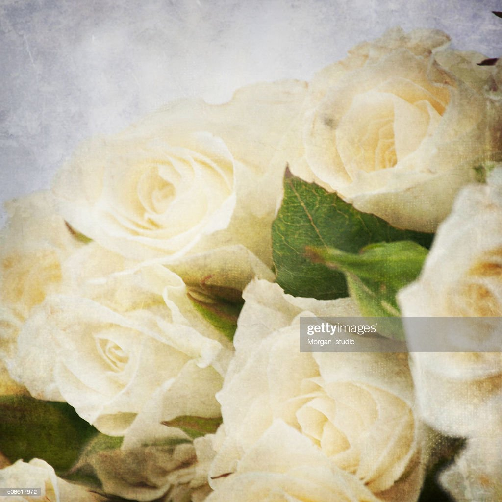 Vintage style, fresh roses, spring flowers : Stock Photo