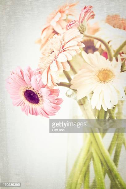 vintage style gerbera daisies in vase - breekbaarheid stockfoto's en -beelden