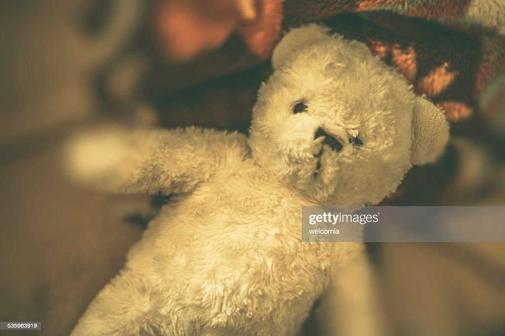 Vintage Teddy Bear : Stock Photo