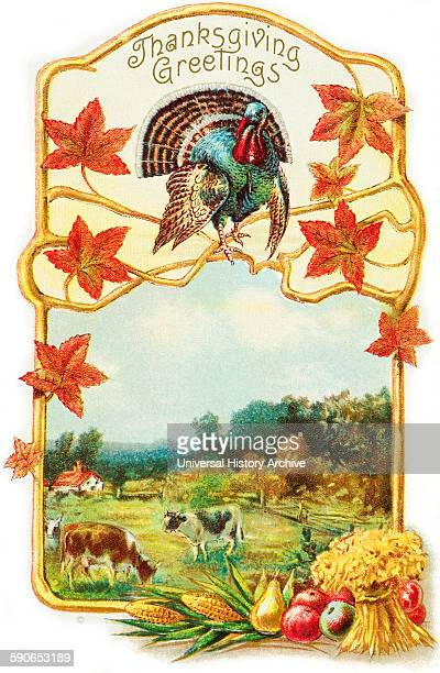 Vintage Thanksgiving greeting card with illustration of turkey and cows from 19th century